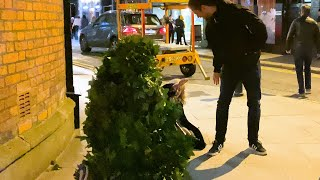 She Fell on the Ground: Bushman Prank