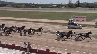 Vidéo de la course PMU PREMI CAMPOS