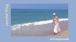Vlog [솜달로그]여름휴가 강원도 강릉 속초 삼척 고…