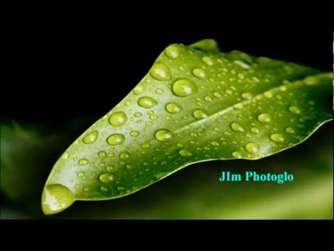 JIM PHOTOGLO - THE BEST THAT I CAN BE [w/ lyrics]