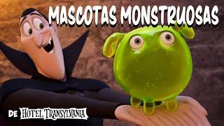 HOTEL TRANSYLVANIA: TRANSFORMANÍA   'Mascotas monstruosas'