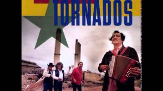 Watch Texas Tornados A Man Can Cry video