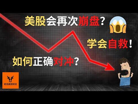 美股会再次崩盘? 如何正确对冲? 资金走势图公开!【美股分析】(字幕请点CC)