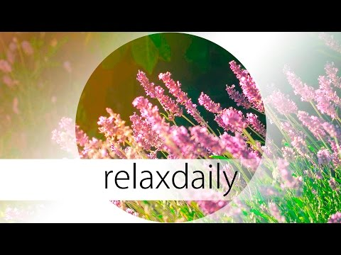 Music to relax your mind  - calm, smooth, healing - N°040 (4K)