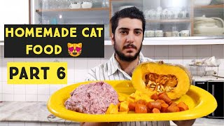 Homemade Cat Food | persian cat food recipe for Summer | How to make cheap homemade cat food at home