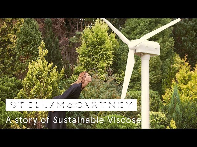 Deforestation: a story of sustainable viscose | Stella McCartney