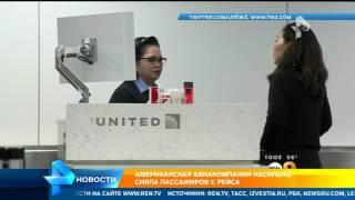видео Cкорпион ужалил пассажира на борту самолета United Airlines