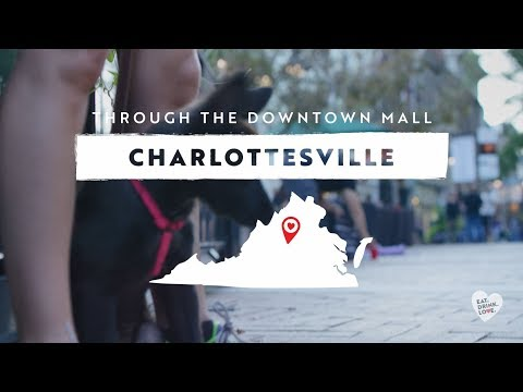Through Charlottesville's Downtown Mall