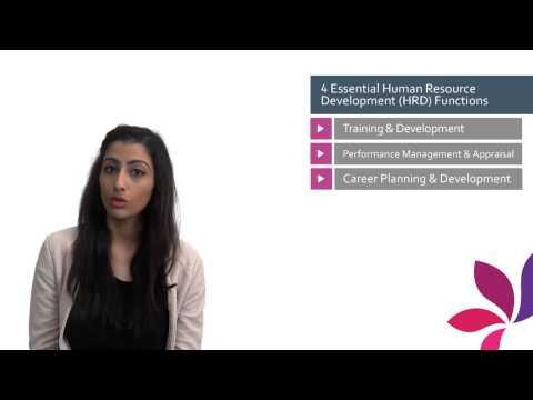 4 Essential Human Resource Development HRD Functions
