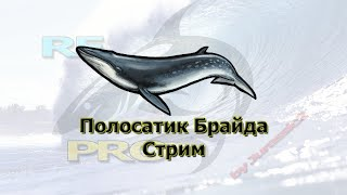 Русская Рыбалка 3 99 Ловим китов стрим Jurassic2