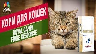 Корм для кошек Royal Canin Fibre response | Обзор корм для кошек Royal Canin Fibre response
