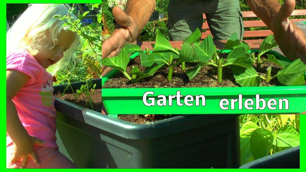 Garten Erleben Heu Fast Fertig Garten Sehen Und Inspirieren Lassen