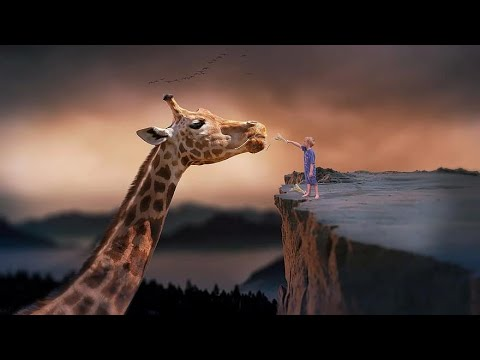Philosophy by Arthur Schopenhauer - YouTube