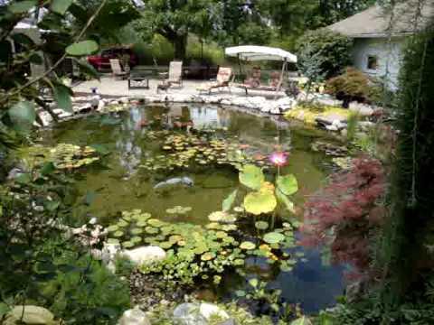 Beautiful backyard pond - YouTube on Stunning Backyards  id=61796