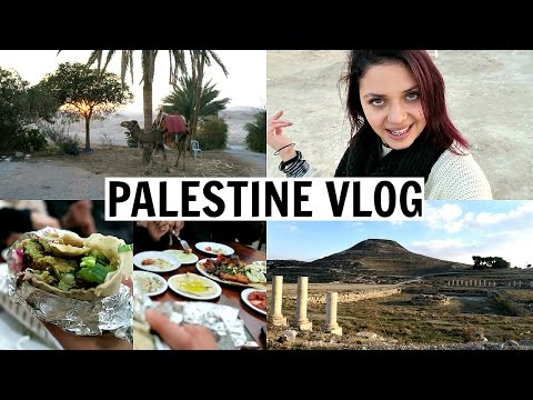 Palestine Vlog! Bethlehem, Hebron, Jericho, and The Dead Sea Tour!