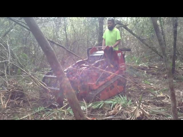 Brush Clearing Removal Land Clearing Pensacola R & R Services