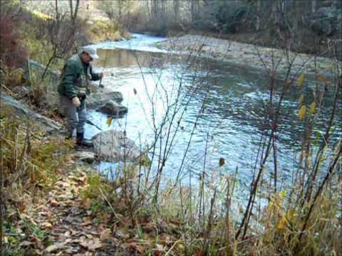 Fishing on Lower Helton Creekwmv YouTube