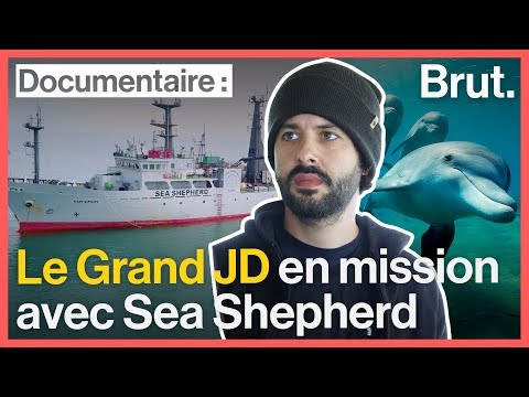 Le Grand JD En Mission Avec Les Activistes De  Sea Shepherd