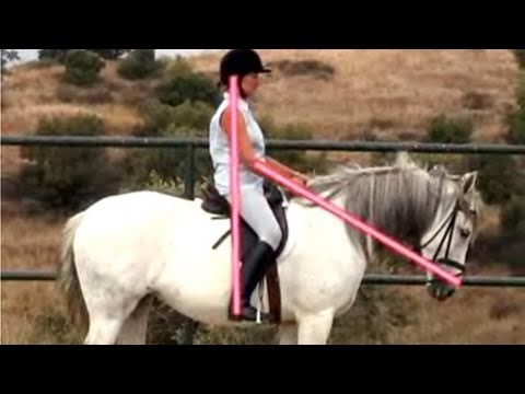 How To Practice Your Classical Seat In Horseback Riding