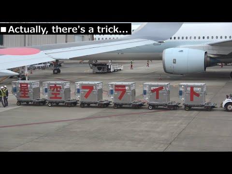 JAL Group Spirit