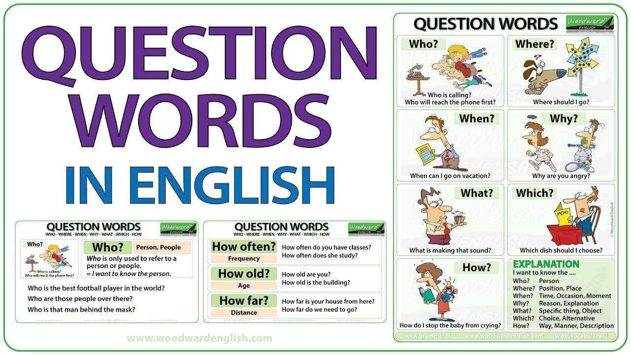 hight resolution of Questions exercises: what