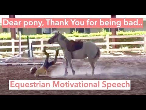 Dear Pony, thank you for Misbehaving. // Equestrian Motivational Speech