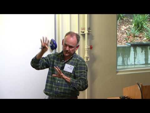 Neural Mechanisms of Vision
