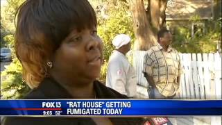 Crews begin tenting St. Petersburg home infested with rats