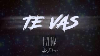 DJ TAO - TE VAS (OZUNA) REMIX
