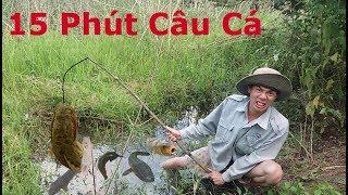 Lạc Vào Động Cá .Chỉ 15 Phút Câu Cá Mà Bắt Được Cả Đống Cá | Catch Fish Trap | Câu Cá Lóc ,Cá Trê