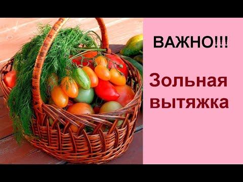 Как правильно готовить настой золы (зольную вытяжку)