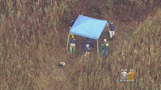 Human Remains Found In Park In Nassau County