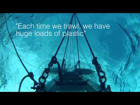 ASAs Exclusive Report from the Pacific Garbage Patch