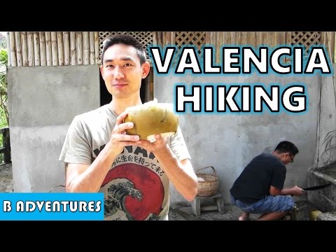 Valencia: Fresh Coconut, Mountain Hiking, Negros Oriental, Philippines S2 Ep10