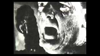 Videowest - Science Fiction - Roger Corman - Ray Bradbury