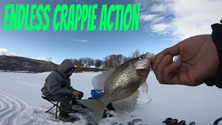 TONS OF CRAPPIE ice fishing pineview reservoir utah icefishing ice fish