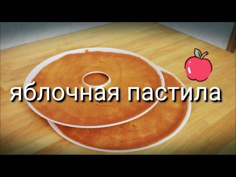 Яблочная пастила в домашних условиях в сушилке