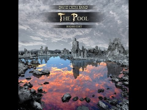 The Pool (radio edit) by the David Cross Band