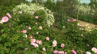 How to Design a Garden | P. Allen Smith Classics