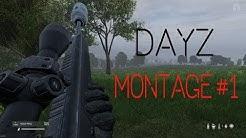 DayZ Montage+Raid #1 [Omnicidal]