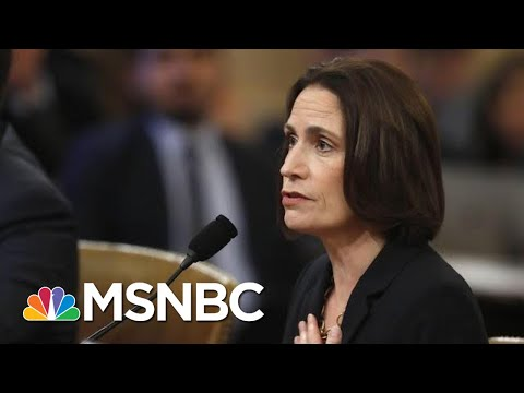 Fiona Hill: It Is 'Not Credible' Sondland Didn't Know Burisma Was Linked To The Bidens   MSNBC