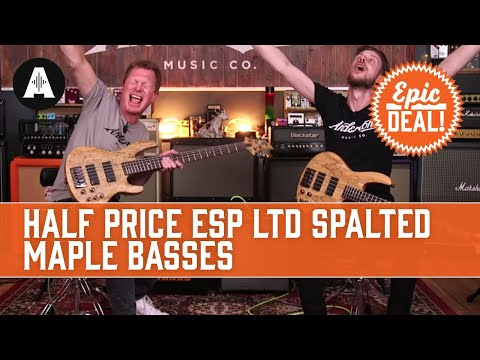 Half Price ESP LTD Spalted Maple Basses - Epic Deal!
