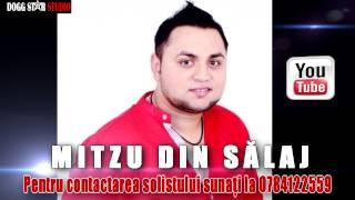 Mitzu din Salaj - Nu mai sunt om din vina ta ( Oficial Audio )