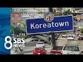 """미 한인사회 """"한국 가면 못 돌아온다"""" 술렁 / SBS"""