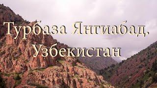 Узбекистан.Турбаза Янгиабад.