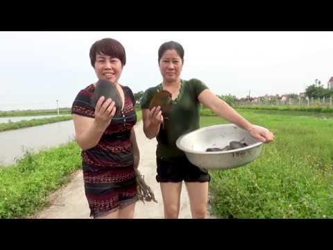 Phát Minh đỉnh cao - Món ăn tăng cường Dân số - Trai nướng đu đủ,Gió Quê