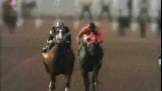 Remington Park Quarter Horse Racing - OQHRA - 2
