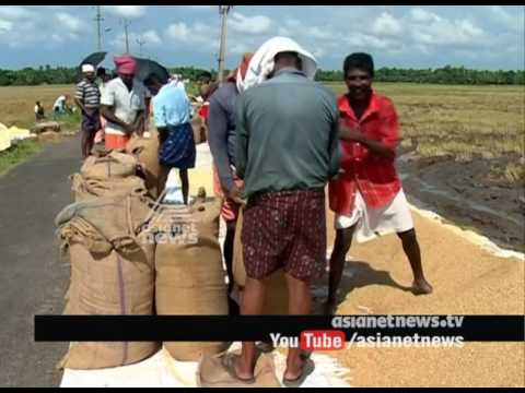 Loan repayment failures; Kuttanad farmers are in crisis