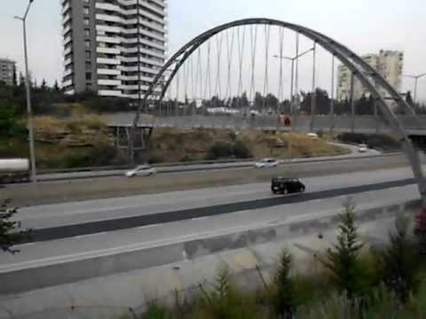 dog travel turkey in adana 22