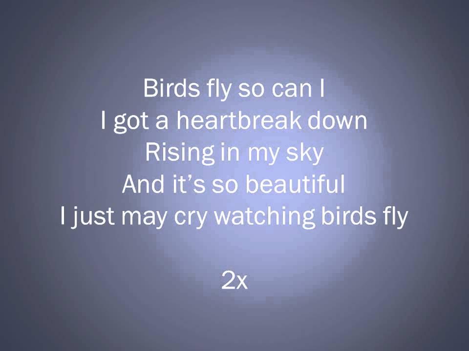 Hardwell Feat. Mr. Probz - Birds Fly Lyrics Video - YouTube